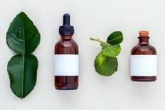 Εναλλακτικά φύλλα και πετρέλαια kaffir υγειονομικής περίθαλψης φρέσκα llime στο μ στοκ εικόνα