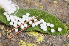 Εναλλακτική ιατρική με τα βοτανικά χάπια Στοκ Εικόνα