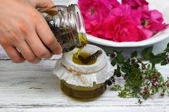 Εναλλακτική ιατρική, πετρέλαιο θεραπειών από τα θεραπευτικά χορτάρια Στοκ εικόνα με δικαίωμα ελεύθερης χρήσης