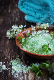 εναλλακτική ιατρική salt spa θεραπεία λουτρών helthcare Στοκ Εικόνα
