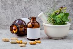 Εναλλακτικό δεντρολίβανο χορταριών υγειονομικής περίθαλψης φρέσκο, θυμάρι λεμονιών, fenn Στοκ φωτογραφία με δικαίωμα ελεύθερης χρήσης