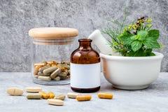 Εναλλακτικό δεντρολίβανο χορταριών υγειονομικής περίθαλψης φρέσκο, θυμάρι λεμονιών, fenn Στοκ Φωτογραφίες