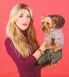 Ενδυμασία και εξαρτήματα Ποιες φυλές σκυλιών πρέπει να φορέσουν τα παλτά Αγκάλιασμα κοριτσιών λίγο σκυλί στο παλτό Η γυναίκα φέρν στοκ φωτογραφίες με δικαίωμα ελεύθερης χρήσης