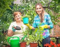 Ενεργές μητέρα κηπουρών και κόρη με τα δοχεία των λουλουδιών, νερό στοκ εικόνες