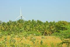 Ενεργειακές εναλλακτικές λύσεις 6 Αιολικό πάρκο στην ινδική επαρχία του Κεράλα Στοκ Εικόνες