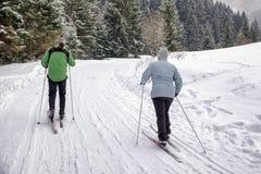 ενεργοί πρεσβύτεροι Ανώμαλο να κάνει σκι Στοκ φωτογραφία με δικαίωμα ελεύθερης χρήσης