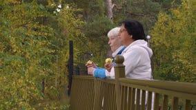 Ενεργοί πρεσβύτεροι που τρώνε τα μήλα και που στέκονται κοντά στο φράκτη στο πάρκο φθινοπώρου απόθεμα βίντεο