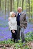 Ενεργό ανώτερο ζεύγος που στο δάσος Στοκ εικόνα με δικαίωμα ελεύθερης χρήσης
