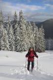 Ενεργό υπόλοιπο το χειμώνα Στοκ φωτογραφίες με δικαίωμα ελεύθερης χρήσης