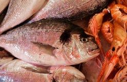 Ενετική αγορά ψαριών - dorados Η αγορά ψαριών Rialto βρίσκεται παράλληλα με το μεγάλο κανάλι κοντά στη γέφυρα Rialto - Βενετία, Ι Στοκ φωτογραφίες με δικαίωμα ελεύθερης χρήσης