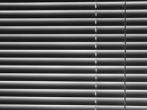Ενετικός τυφλός: μέτωπο - χ Στοκ φωτογραφία με δικαίωμα ελεύθερης χρήσης