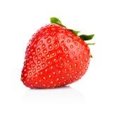 Ενιαία ολόκληρη φράουλα που απομονώνεται Στοκ Φωτογραφίες