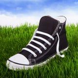 Ενιαία πάνινα παπούτσια νεολαίας σε μια πράσινη χλόη Στοκ Φωτογραφίες