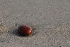 ενιαία πέτρα στοκ φωτογραφίες με δικαίωμα ελεύθερης χρήσης