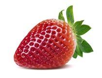 Ενιαία τέλεια φράουλα που απομονώνεται στο άσπρο υπόβαθρο Στοκ Εικόνες