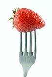 ενιαία φράουλα δικράνων Στοκ φωτογραφίες με δικαίωμα ελεύθερης χρήσης