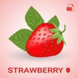 Ενιαία φρέσκια ώριμη φράουλα με τα φύλλα Ελεύθερη απεικόνιση δικαιώματος