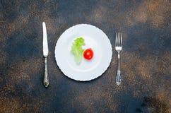 Ενιαίες φύλλο και ντομάτα μαρουλιού στο πιάτο wite Στοκ εικόνες με δικαίωμα ελεύθερης χρήσης