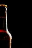 Ενιαίος μερικός πάγος - κρύο μπουκάλι μπύρας ως σύνορα Στοκ εικόνα με δικαίωμα ελεύθερης χρήσης