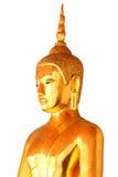 Ενιαίο άγαλμα του Βούδα περισυλλογής που απομονώνεται στο άσπρο υπόβαθρο Στοκ Εικόνα