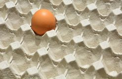 Ενιαίο αυγό στο πλακάκι εμπορευματοκιβωτίων εγγράφου στοκ εικόνες