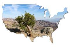 Ενιαίο δέντρο ενάντια στο ελάττωμα του San Andreas στη μορφή των ΗΠΑ διανυσματική απεικόνιση