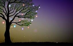 Ενιαίο δέντρο θερινών νεράιδων με τα χρωματισμένα φανάρια και τα σπινθηρίσματα, δέντρο και fireflies το βράδυ, μαγικό βράδυ νεράι ελεύθερη απεικόνιση δικαιώματος
