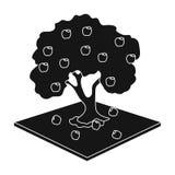 Ενιαίο εικονίδιο της Apple στο μαύρο ύφος Διανυσματικός Ιστός απεικόνισης αποθεμάτων συμβόλων της Apple Στοκ Εικόνες