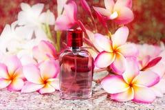 Ενιαίο μπουκάλι του γλυκού ρόδινου ευώδους αρώματος Στοκ εικόνα με δικαίωμα ελεύθερης χρήσης