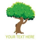 Ενιαίο πράσινο δέντρο κινούμενων σχεδίων Στοκ Φωτογραφίες