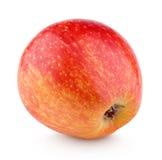 Ενιαίο φρέσκο κόκκινο κίτρινο μήλο που απομονώνεται στο λευκό Στοκ Εικόνες