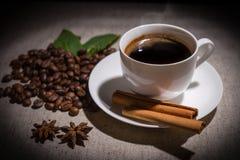 Ενιαίο φλιτζάνι του καφέ με την κανέλα και τα καρυκεύματα Στοκ Φωτογραφία
