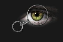 Ενισχύοντας - γυαλί, μάτι Στοκ Εικόνα