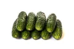 Εννέα πράσινα αγγούρια λαχανικών σε ένα λευκό Στοκ εικόνες με δικαίωμα ελεύθερης χρήσης