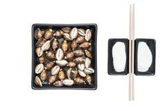 εννοιολογικά τρόφιμα Στοκ Φωτογραφίες
