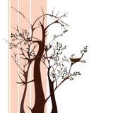 Δέντρα με τη φωλιά Στοκ Εικόνες
