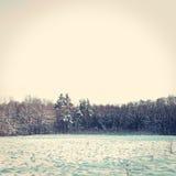 εννοιολογικός χειμώνας πάρκων εικόνας Στοκ Εικόνα