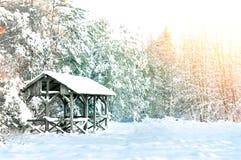 εννοιολογικός χειμώνας πάρκων εικόνας Στοκ Φωτογραφίες
