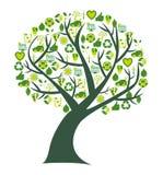 Εννοιολογικό δέντρο με το βιο eco και τα περιβαλλοντικά σύμβολα και τα εικονίδια Στοκ Εικόνες