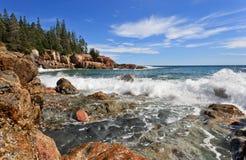 ενυδρίδα απότομων βράχων Στοκ φωτογραφία με δικαίωμα ελεύθερης χρήσης