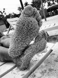 Ενυδατωμένα άμμος πόδια Στοκ φωτογραφία με δικαίωμα ελεύθερης χρήσης