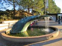 Ενυδρείο σημύδων στο όργανο Scripps της ωκεανογραφίας, πηγή φαλαινών, Σαν Ντιέγκο, Καλιφόρνια Στοκ φωτογραφία με δικαίωμα ελεύθερης χρήσης