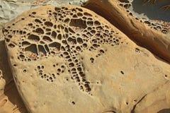 Σχηματισμοί tafoni παραλιών χαλικιών στην κοίλη κρατική παραλία φασολιών στη θερμ. στοκ φωτογραφία με δικαίωμα ελεύθερης χρήσης