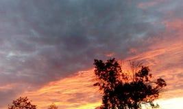 Ενδιαφέρουσα άποψη του ουρανούηλιοβασιλέματος summerΣτοκ Εικόνες