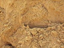 Ενδιαφέρουσα λεπτομέρεια αμμόλοφων άμμου Στοκ Εικόνες
