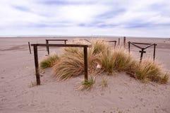 Ενδιαφέρουσα ξύλινη κατασκευή και πράσινη βλάστηση στην αμμώδη παραλία Στοκ φωτογραφίες με δικαίωμα ελεύθερης χρήσης