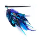 Εξάρτημα φτερών τρίχας Στοκ Εικόνα