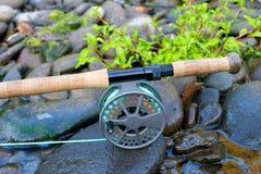 Εξέλικτρο αλιείας μυγών Στοκ Φωτογραφίες