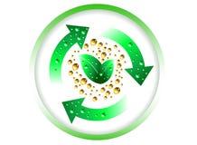 εξέλιξη πράσινη Στοκ Εικόνες