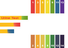 Εξέταση ούρων Σωλήνας δοκιμής εκμετάλλευσης χεριών με το δείκτη pH που συγκρίνει το χρώμα με τις λουρίδες κλίμακας και litmus για διανυσματική απεικόνιση